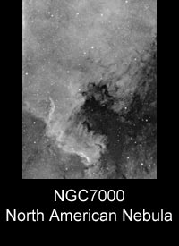 NGC7000 The North American Nebula