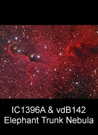 IC1396A & vdB142 - The Elephant Trunk Nebula